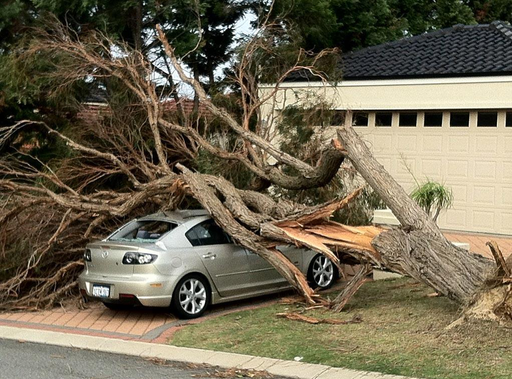 Perth Storm Damage How To Keep Your Home Safe In Vogue
